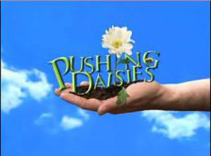pushing-daisies.jpg